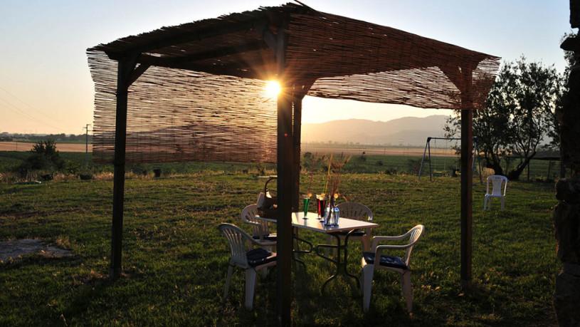 Toscana-Pet-friendly---castelli-di-casalappi5