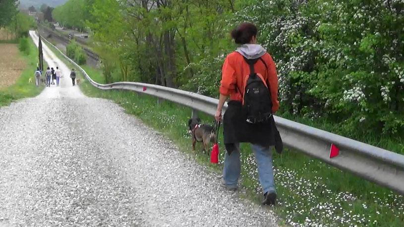 camminata_pet_friencly06