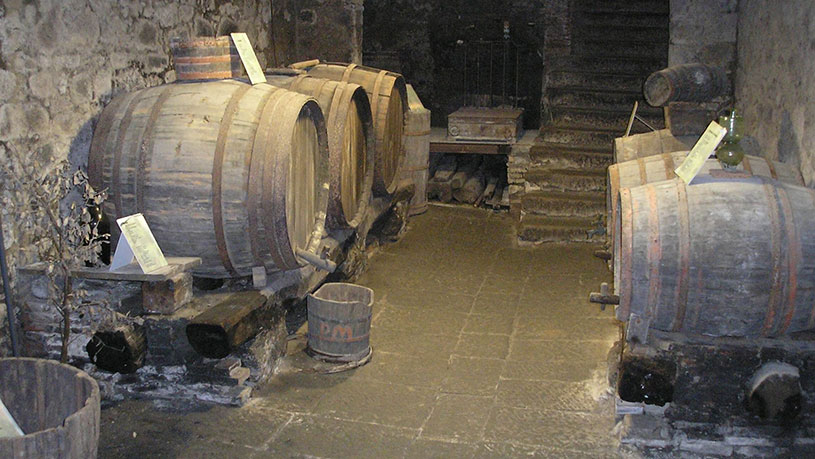 Museum of Roccastrada's wine and vine